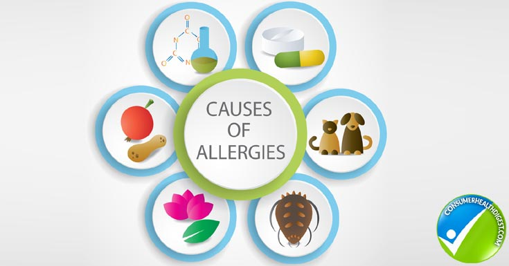 What's Allergy & When to visit Allergy Clinics in Qatar ?
